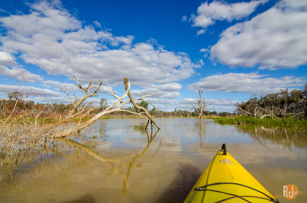Kayaking on Warrego River