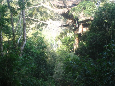 photo of a treehouse in Laos