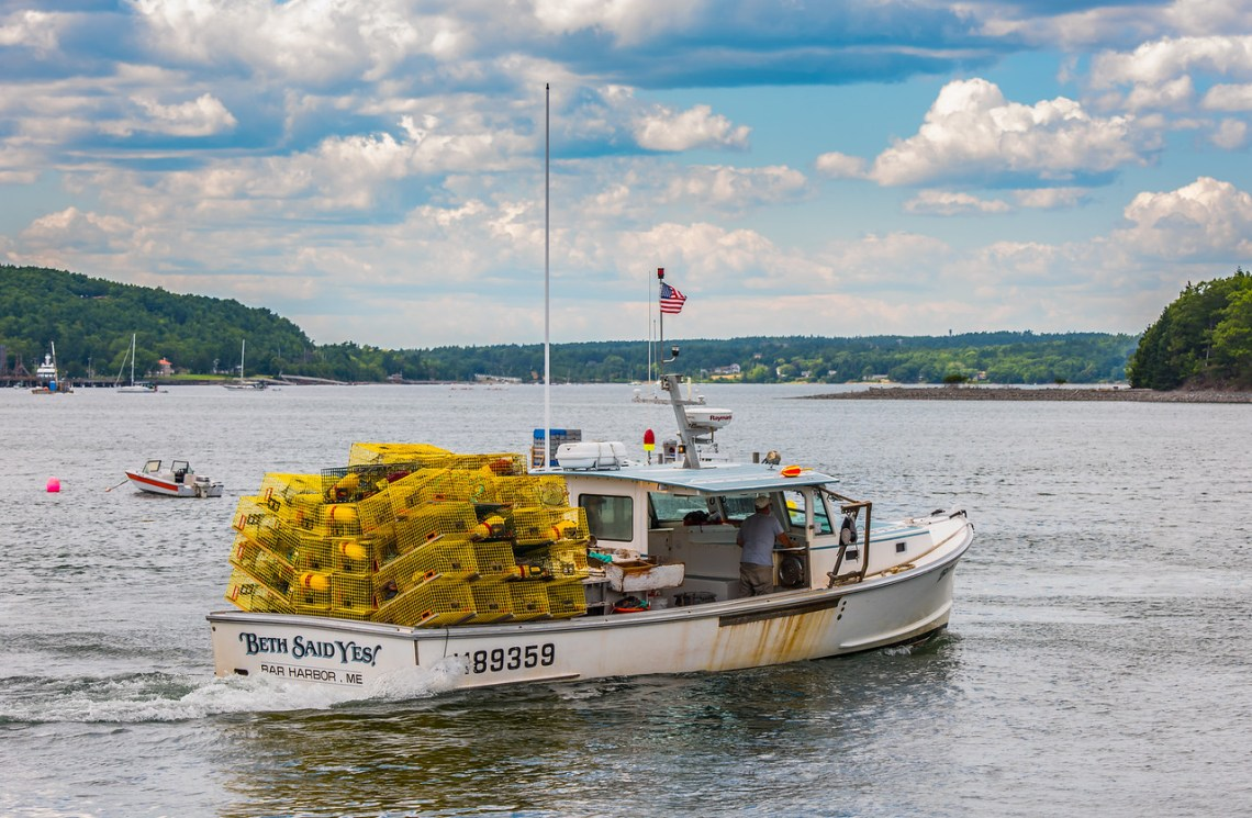 Colorful Maine - Trees, Traps, Buoys & Flowers - Part 6 – The Illuminating Lens