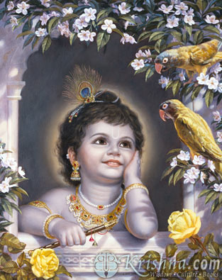 Cute Valentines Day Wallpapers Cute Krishna
