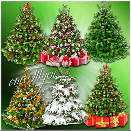Free Christmas tree (transparent background) - layered psd file free