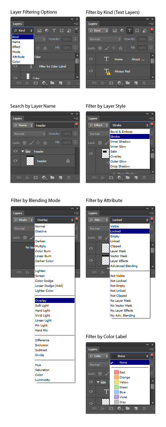 Filtering options in the Layers palette