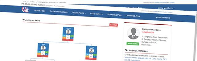 Contoh Aplikasi MLM – Network Marketing Binary systems