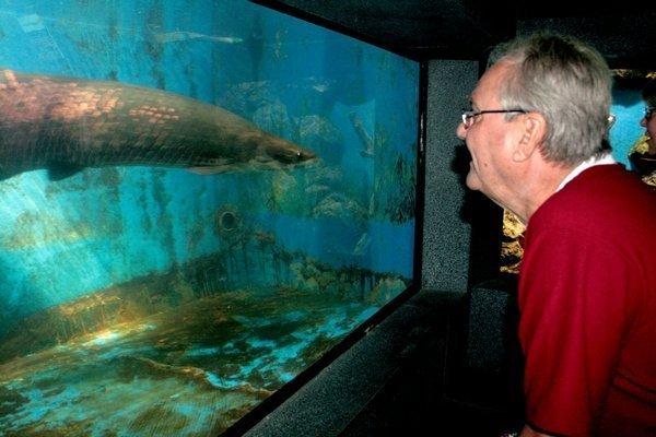 Prince Henrik at the Phuket Aquarium