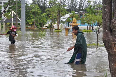 help flood victims in Thailand