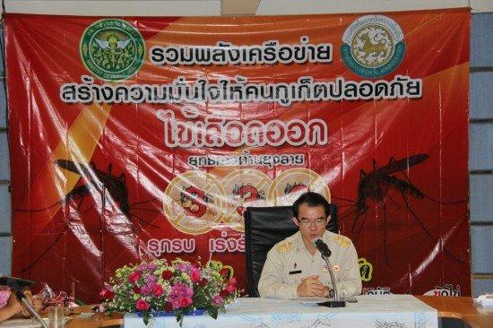 Phuket dengue fever at 20 year high