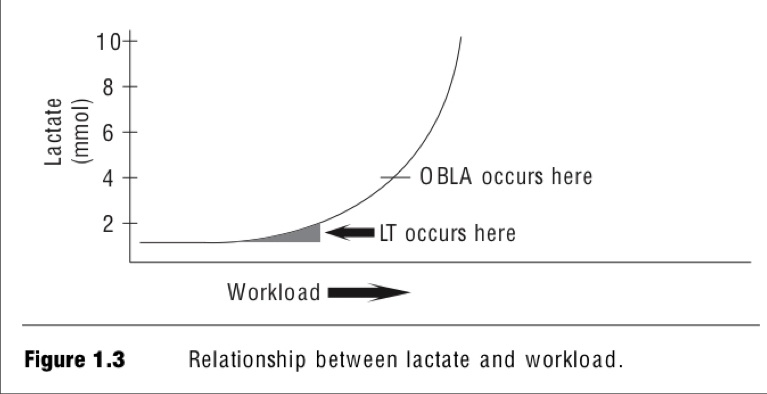 Lactate Threshold and OBLA Medicine \ Physiology Pinterest - warehouse cover letter