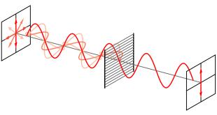 wavePolarization