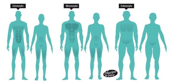anatomie-morphotype-corps-physique-de-rêve