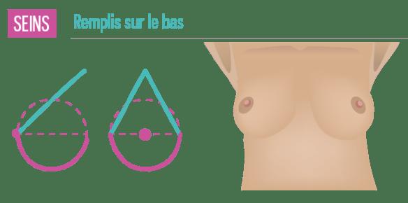 seins-formes-volume-en-bas