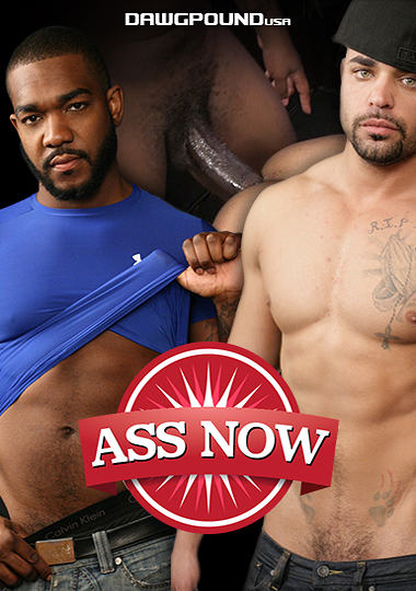 Ass Now cover