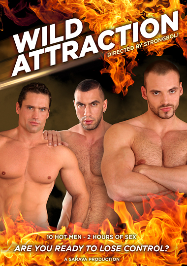 Wild Attraction cover