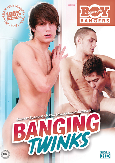 Banging Twinks cover
