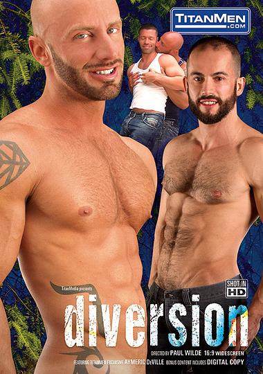 Diversion cover