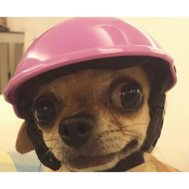 DOG MOTORCYCLE HELMETS Pets Ridding Caps Cosplay Hat ABS