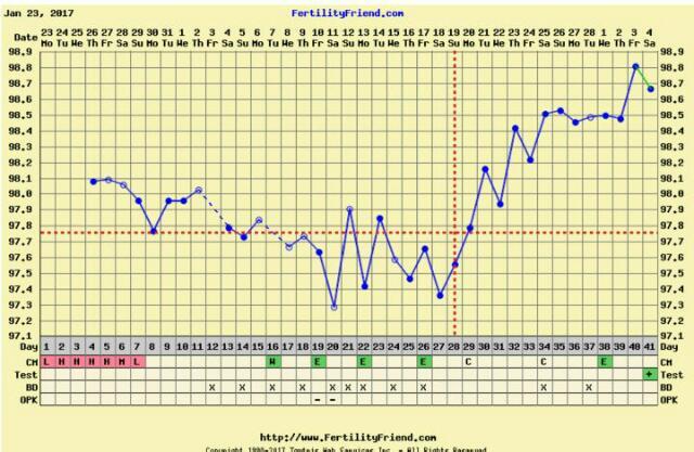 Here\u0027s my BFP chart! - Glow Community