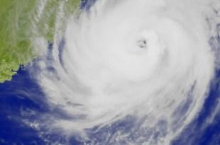 颱風不走飛機不飛…被困在海洋巨蛋都倒掉的鳥蛋宮崎