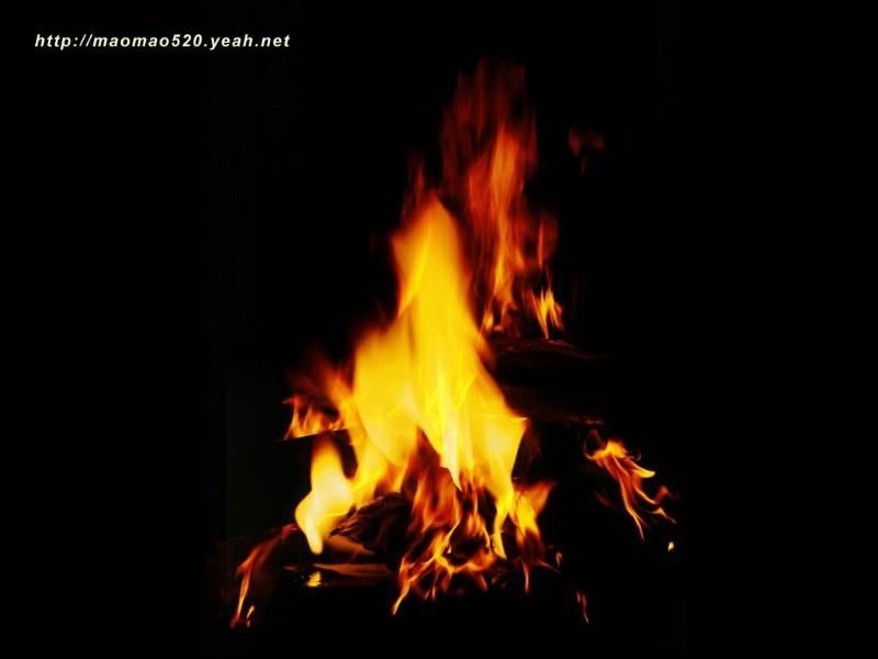 Heat Wallpaper Hd 壁纸800 215 600摄影主题壁纸 火之素材 火的图片素材 Stock Photographs Of Fire