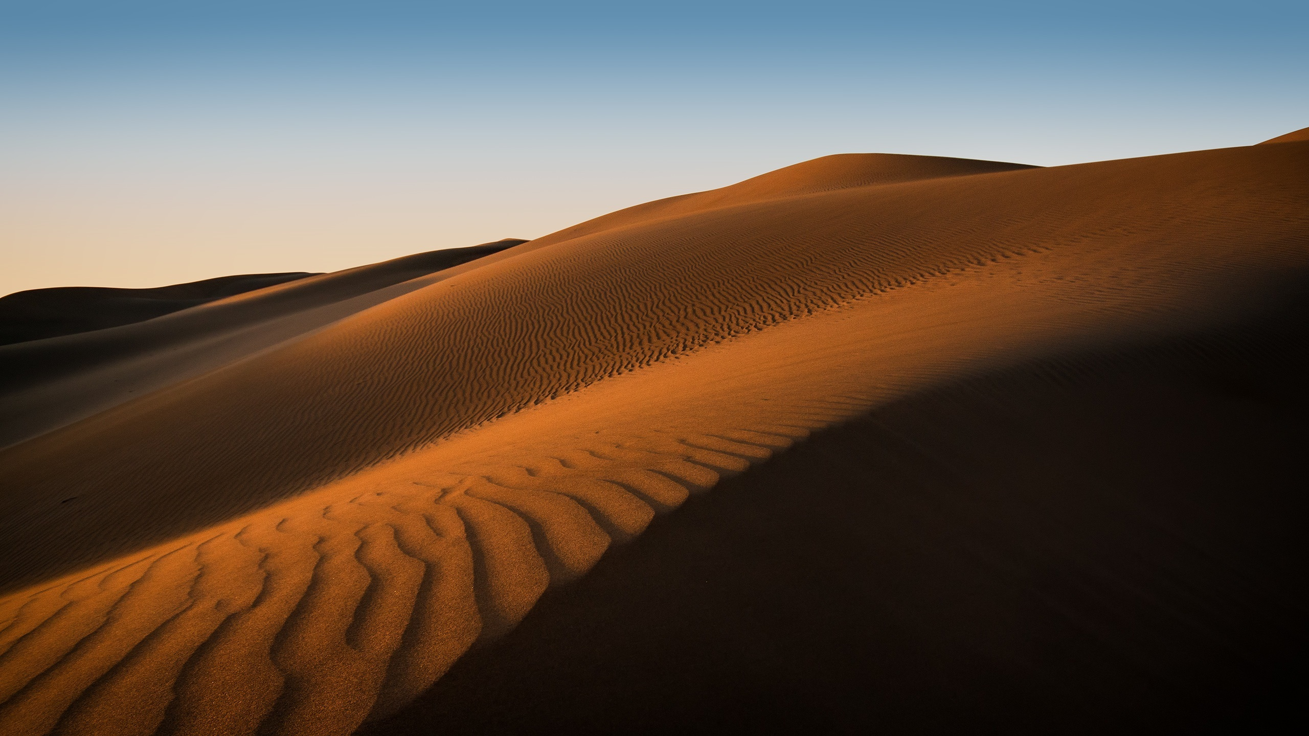 2560x1440 Wallpaper Hd Picalls Com Sand Dunes In Maspalomas Spain By Philipp