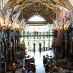 Review: The Animal Kingdom Lodge, Orlando