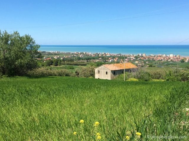 View of the sea from the Marche countryside, in Mondolfo