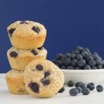 Blueberry Oatmeal Coffee Cake Recipes