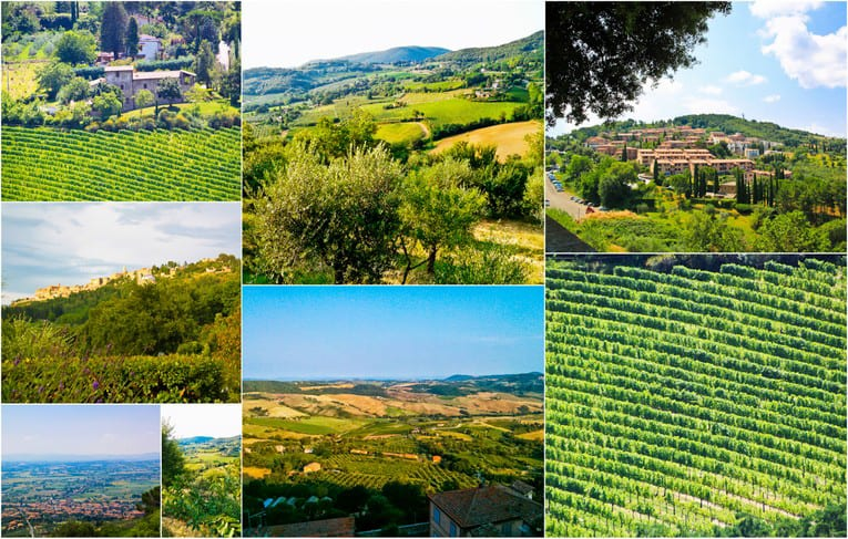 1a - Montepluciano Countryside2