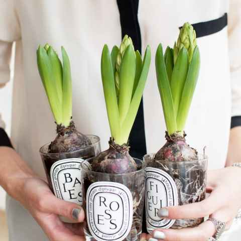 How to Reuse Old Candle Jars, Things to Do With Old Candle Jars, Uses for Candle Jars, How to Recycle Candle Jars, DIY Candle Jars, Popular Pin, DIY Home, Easy Crafts, Crafting, DIY Home Decor, Popular Pin, Things to Do With Candle Jars.