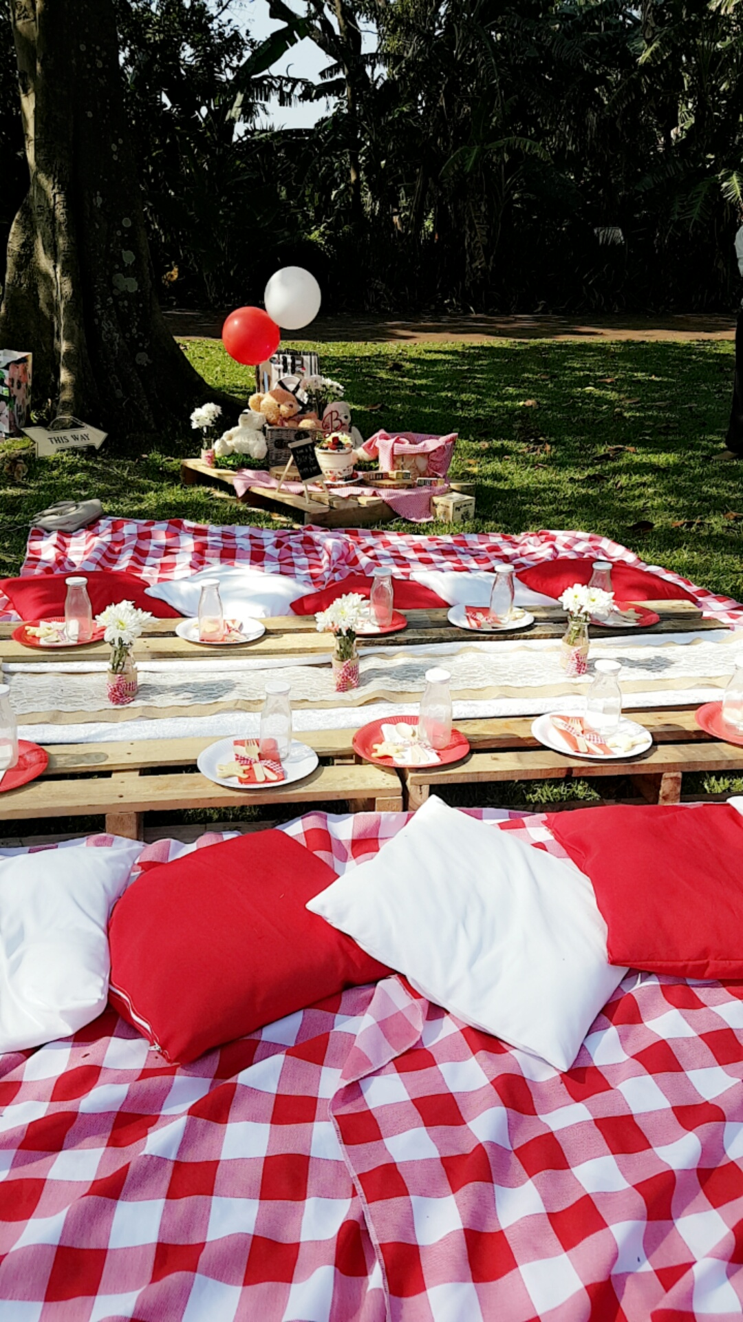 Picnic Decor Hired Goods