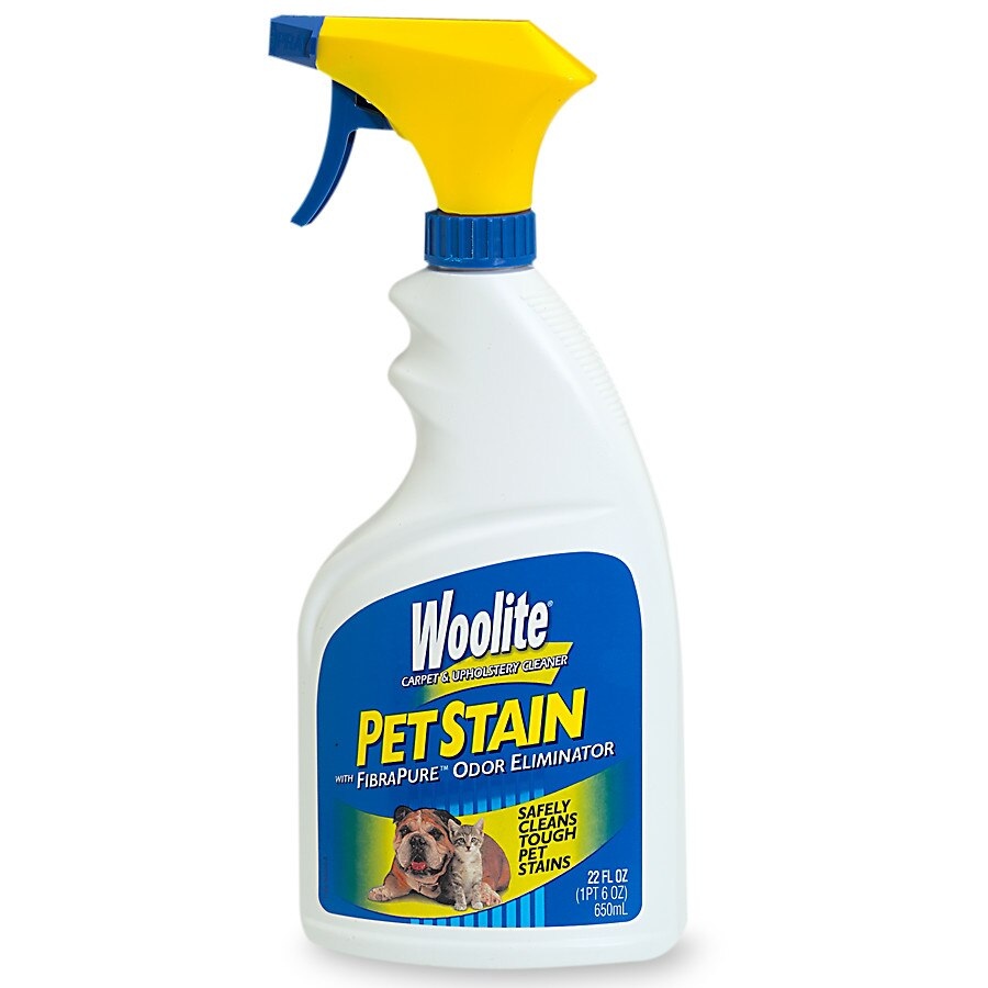 Sofa Foam Cleaner Woolite Pet Stain Carpet Upholstery Cleaner