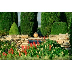 Small Crop Of Free Garden Images