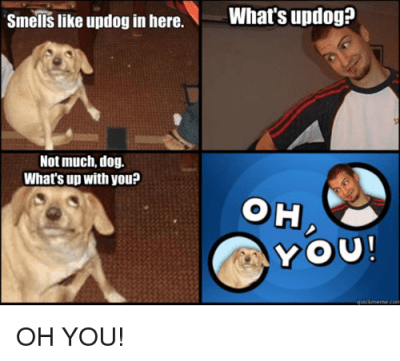 Smells Like Updog in Here W What's Updog? Not Much Dog What's Up With youP OH YOU | Dog Meme on ...