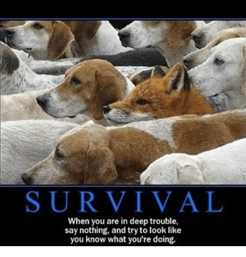 Deep Quotes Wallpapers Survival When You Are In Deep Trouble Say Nothing And Try