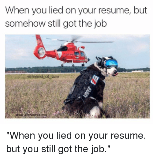 i lied on my resume and got the job resume ideas