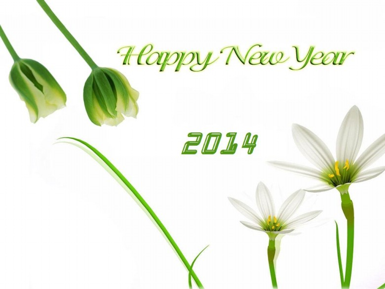 casalangels Happy New Year Greeting Card 2014 Design Pictures-Image