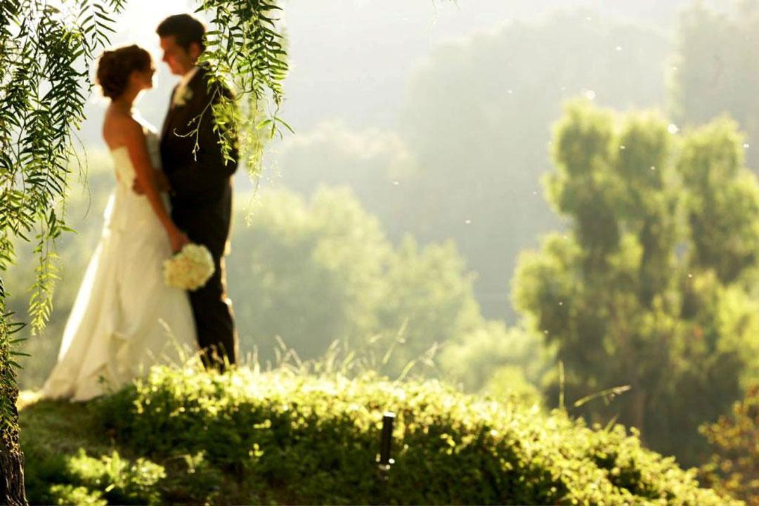Love Quotes Husband Wallpapers Wedding Couple Wallpaper Picsmine