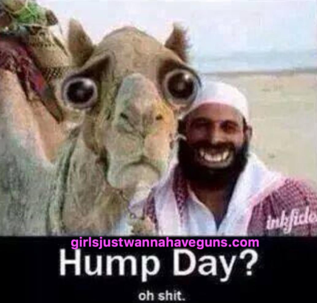 Fullsize Of Happy Hump Day Meme