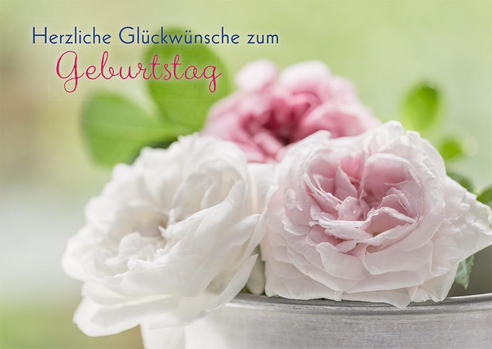 Glückwunschkarte Herzliche Glückwünsche zum Geburtstag (6 St) Rosen