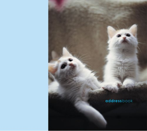 9781845970239 Cats  Kittens (Paperstyle Address Books) - AbeBooks