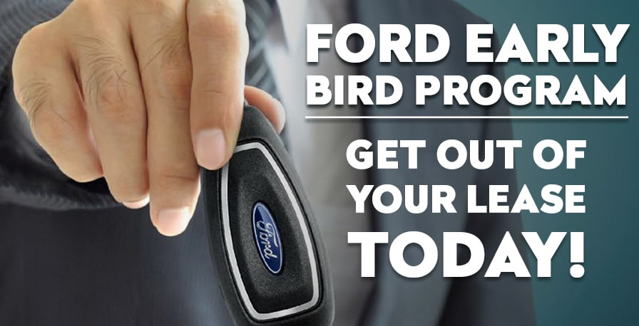 What\u0027s The Word, Bird? Fred Martin Ford Inc
