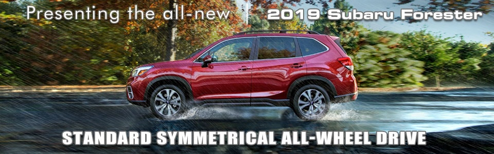 2019 Subaru Forester What\u0027s New and Improved