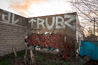 detroit-graffiti-purge-thumb