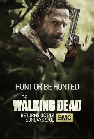Poster - Walking Dead - S5 - 2014