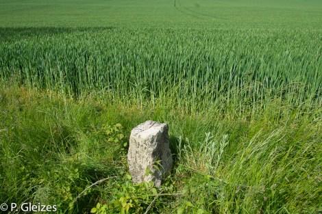 """Borne frontiere, ancienne limite empire allemand, champ de ble, paysage agricole -----------------  Après la défaite, l'accord de paix signé à Versailles le 26 février 1871 imposa l'annexion de l'Alsace-Moselle et une nouvelle frontière entre la France et l'Allemagne. Celle-ci courait du Luxembourg à la Suisse en bouleversant les pourtours des départements de la Moselle, de la Meurthe, des Vosges et du Haut-Rhin. En Lorraine, cette ancienne frontière perdure aujourd'hui, car le département actuel de la Meurthe-et-Moselle a conservé son exact tracé. L'entretien des routes départementales incombant aux Conseils Généraux, les goudrons de revêtement routier changent souvent de couleur quand l'on passe d'un département à l'autre. Deux guerres mondiales n'auront donc pas fait disparaitre ces lignes sur la chaussée. Plus de quatre mille bornes marquées d'un numéro et des lettres D et F ont été positionnées pour jalonner la nouvelle frontière de 1871. Aujourd'hui, certaines sont toujours visibles au bord des fossés. Les lettres D (Deutschland) ont presque toutes été martelées afin de les rendre illisibles. Entre 1871 et 1945, les Alsaciens-Mosellans ont changé cinq fois de nationalités. Cela explique que sur leurs monuments aux morts, à de rares exceptions, l'on n'y lit pas l'épitaphe """"Morts pour la France"""" mais plutôt """"A nos morts"""". Comment, en effet, commémorer le souvenir de ces hommes combattant pour l'armée allemande ?"""