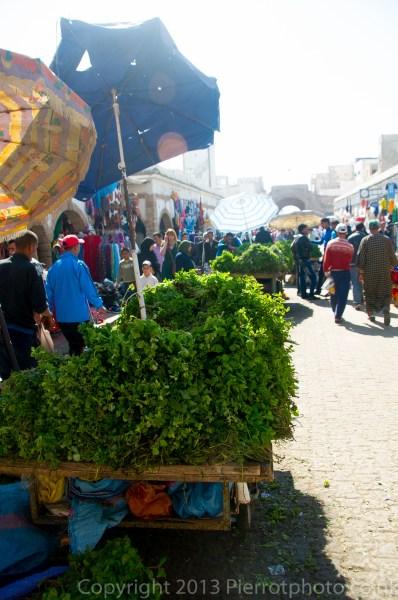 Life in the medina in Essaouira, Morocco