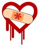 Heartbleed Bug patched