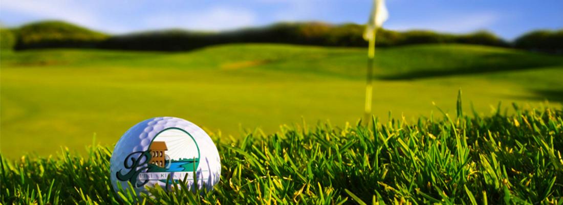 GolfBallLeftHold
