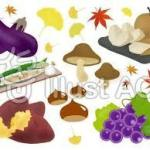 秋の味覚ランキング!旬の野菜と魚で、疲れた体を健康にしましょう!