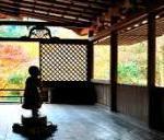 京都高山寺の紅葉の見頃は!鳥獣人物戯画と拝観の見どころをルートで‼