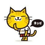 猫背は太るし治し方はあるの!?簡単なストレッチで姿勢を首から自然に美しく!